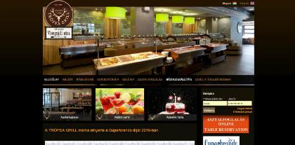 trofeavisegradi weboldal készítés, google adwords, seo, webáruház, facebook